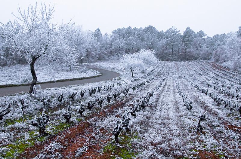 Climat Cahors